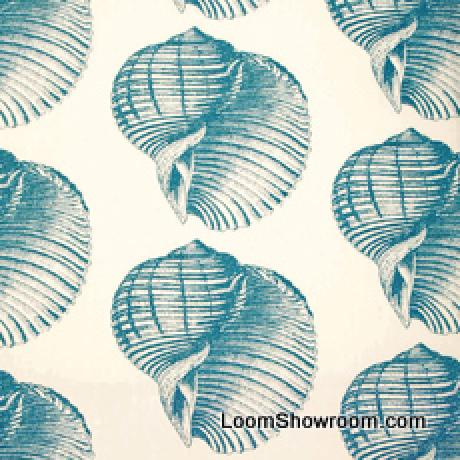 Thomas Paul Sealife Shell Beach Illustrated Life Print Heavy Weight Cotton Fabric Aqua DSO106NR