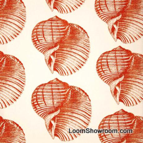 Thomas Paul Sealife Shell Beach Illustrated Life Print Heavy Weight Cotton Fabric Persimmon DSO108NR