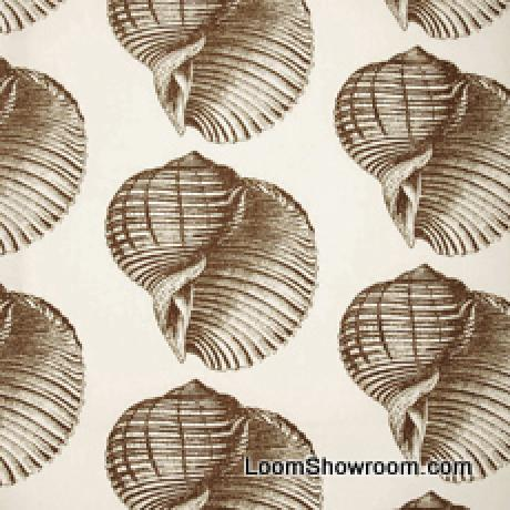 Thomas Paul Sealife Shell Beach Illustrated Life Print Heavy Weight Cotton Fabric Bark dso109NR