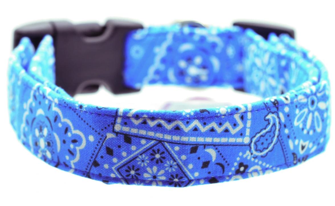Dog Collar World - Blue Bandana