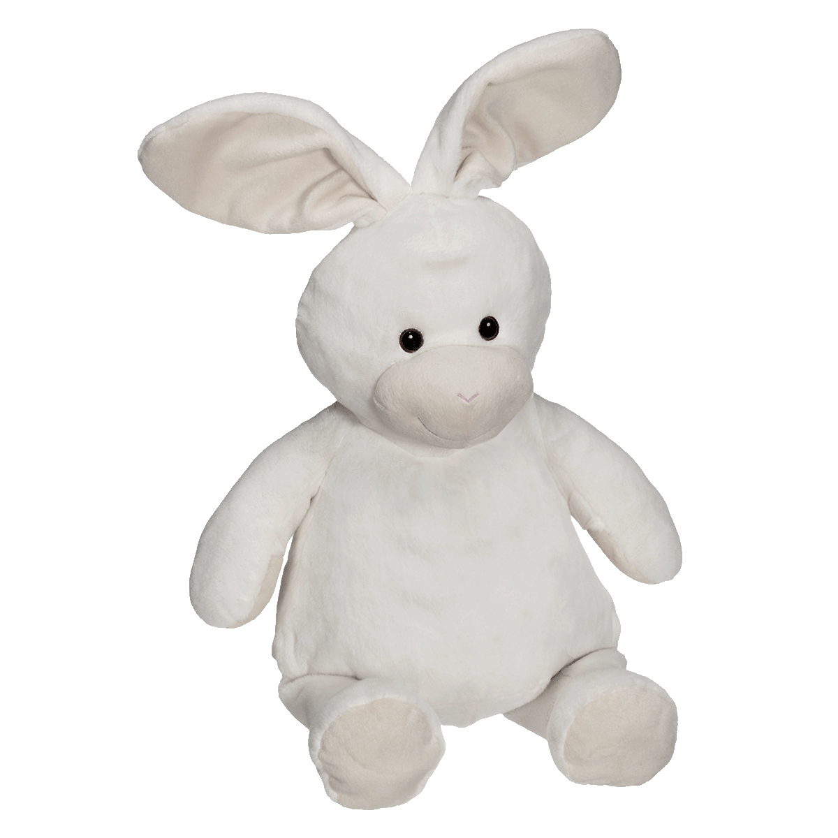 Buddy Bunny
