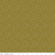 C10825 Olive Seeds Adel in Autumn