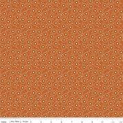 C10825 Persimmon Seeds Adel in Autumn