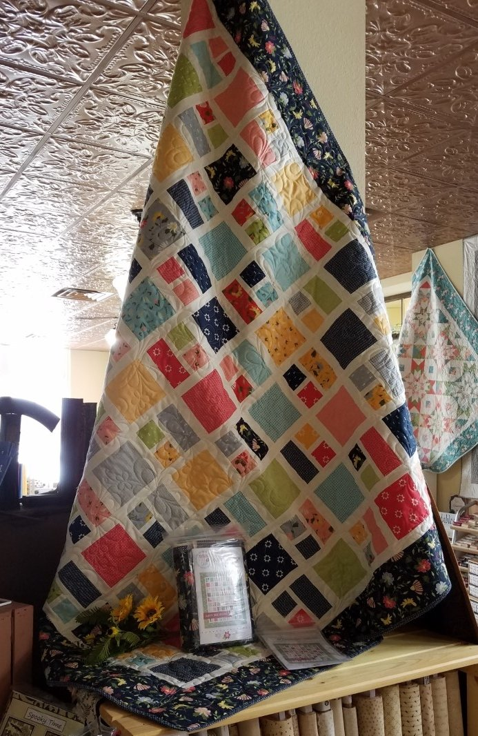 Charming Charlie/Clover Hollow Twin Size Quilt Kit