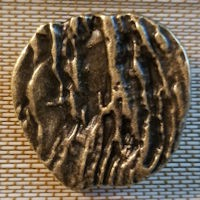 Brass Shank Button