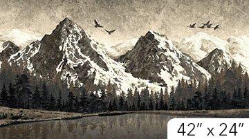 Mountain Wilderness Panel 39378 96