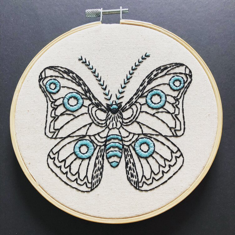 Embroidery Kit Moth in Cloth