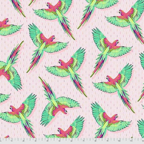 PRE-SALE: Daydreamer- Macaw Ya Later - Dragonfruit