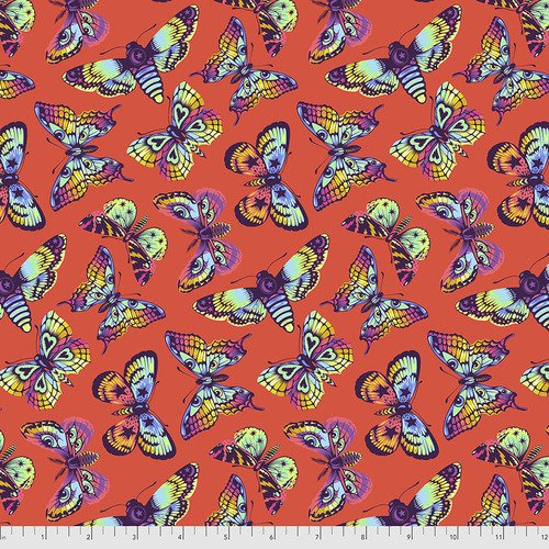 PRE-SALE: Daydreamer- Butterfly Kisses - Papaya