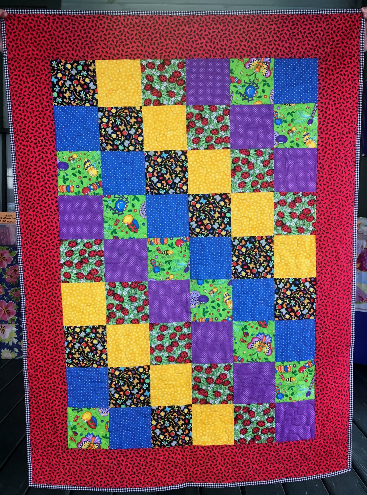 Cute Bug Quilt with Border--Sunsprite Kit
