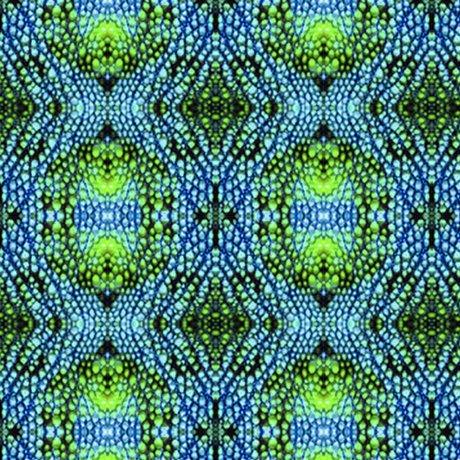 COLOR ME CHAMELEON CHAMELEON SKIN Style # : 27490 -B  Color : BLUE