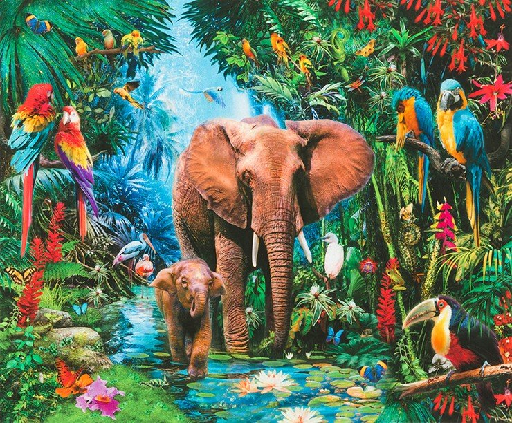 PANEL Elephant Jungle Print AYK-17323-48 JUNGLE by Jan Patrik Krasny from Picture This