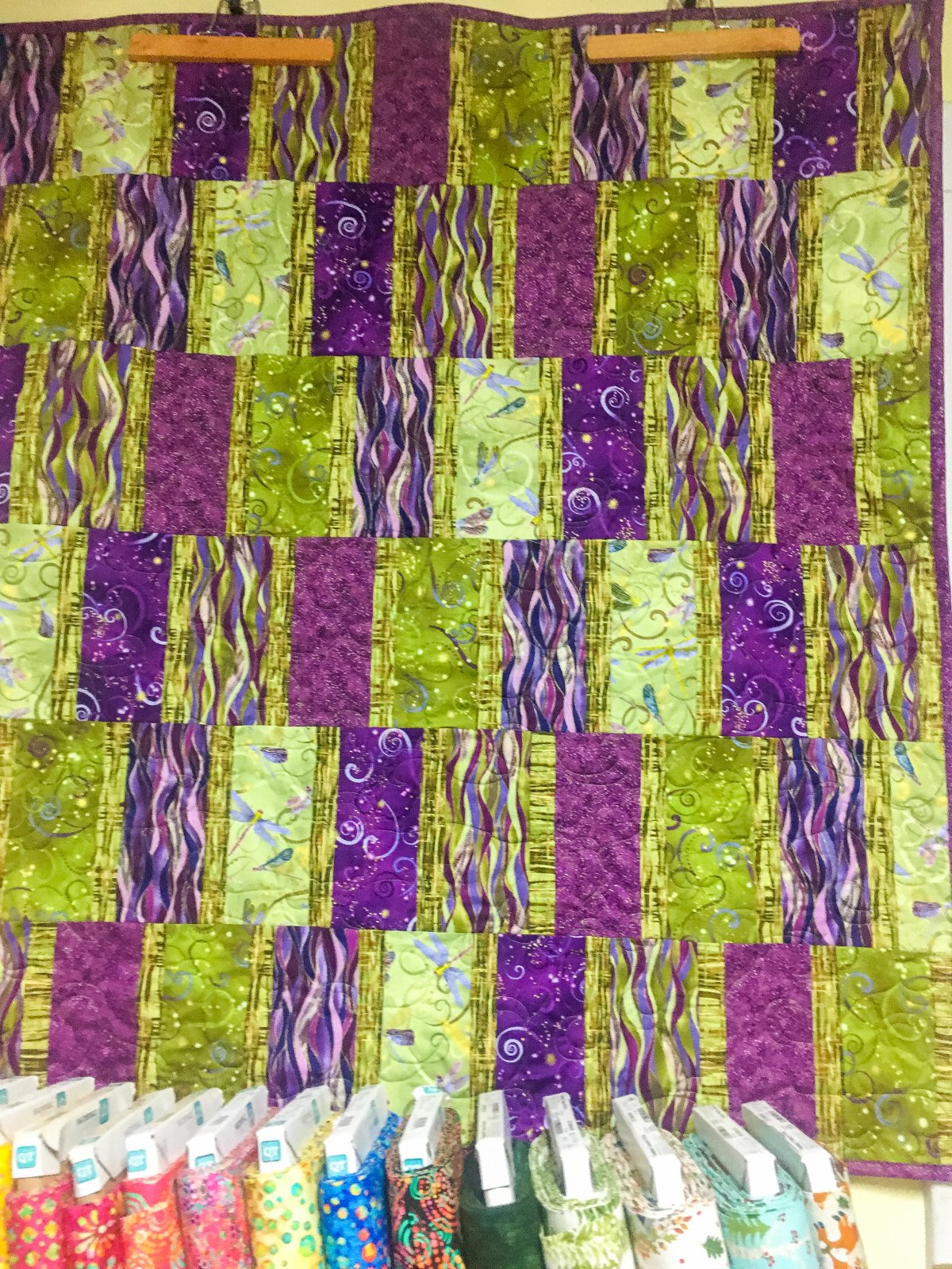 Easy Does It Dragonflies Quilt KIT