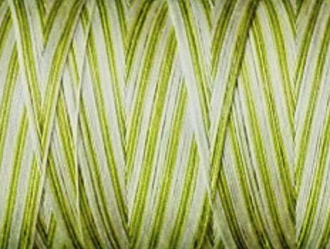 Aurifil Cotton Mako Thread 50wt 1300m MK50 4653 Spring Prairie