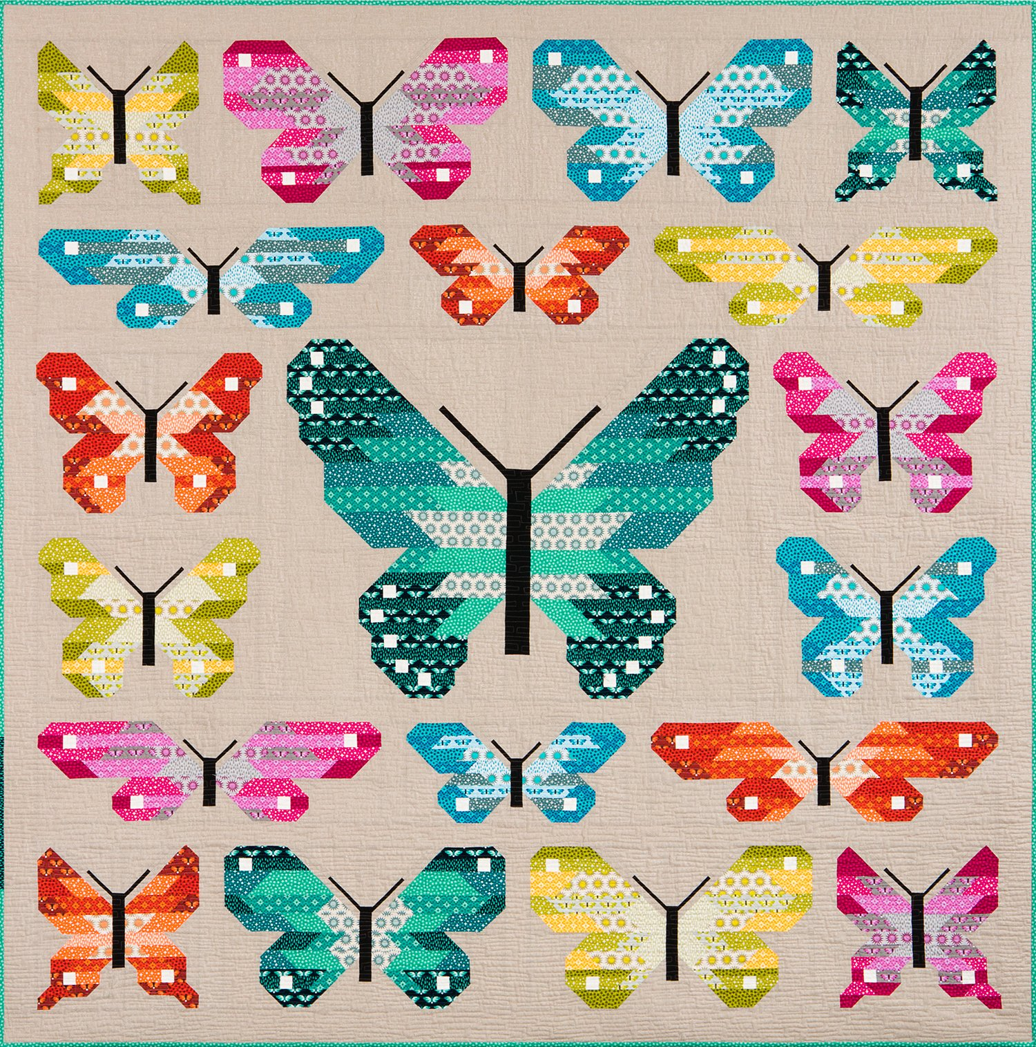 Lepidoptera from Elizabeth Hartman #EH027