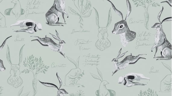 Rabbit Study from the Natural History Collection by Rae Ritchie for Dear Stella