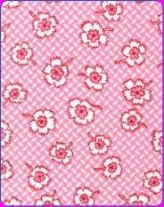 Camellia 9815