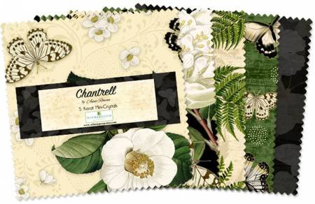 5in Squares Chantrell 24pcs