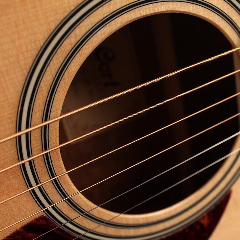 Coated Strings