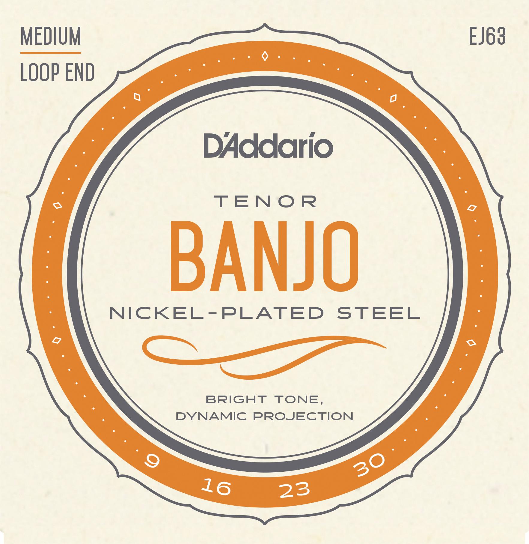 D'Addario Nickel EJ63 Tenor Banjo Strings, 4-String, 9-30