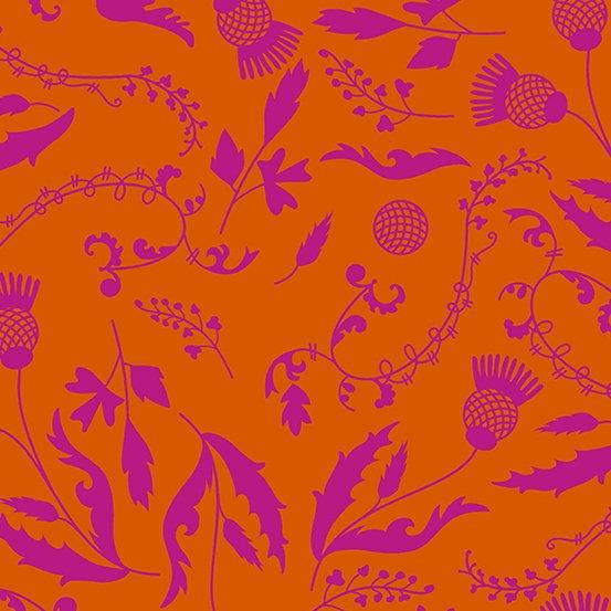 Botany in Orange
