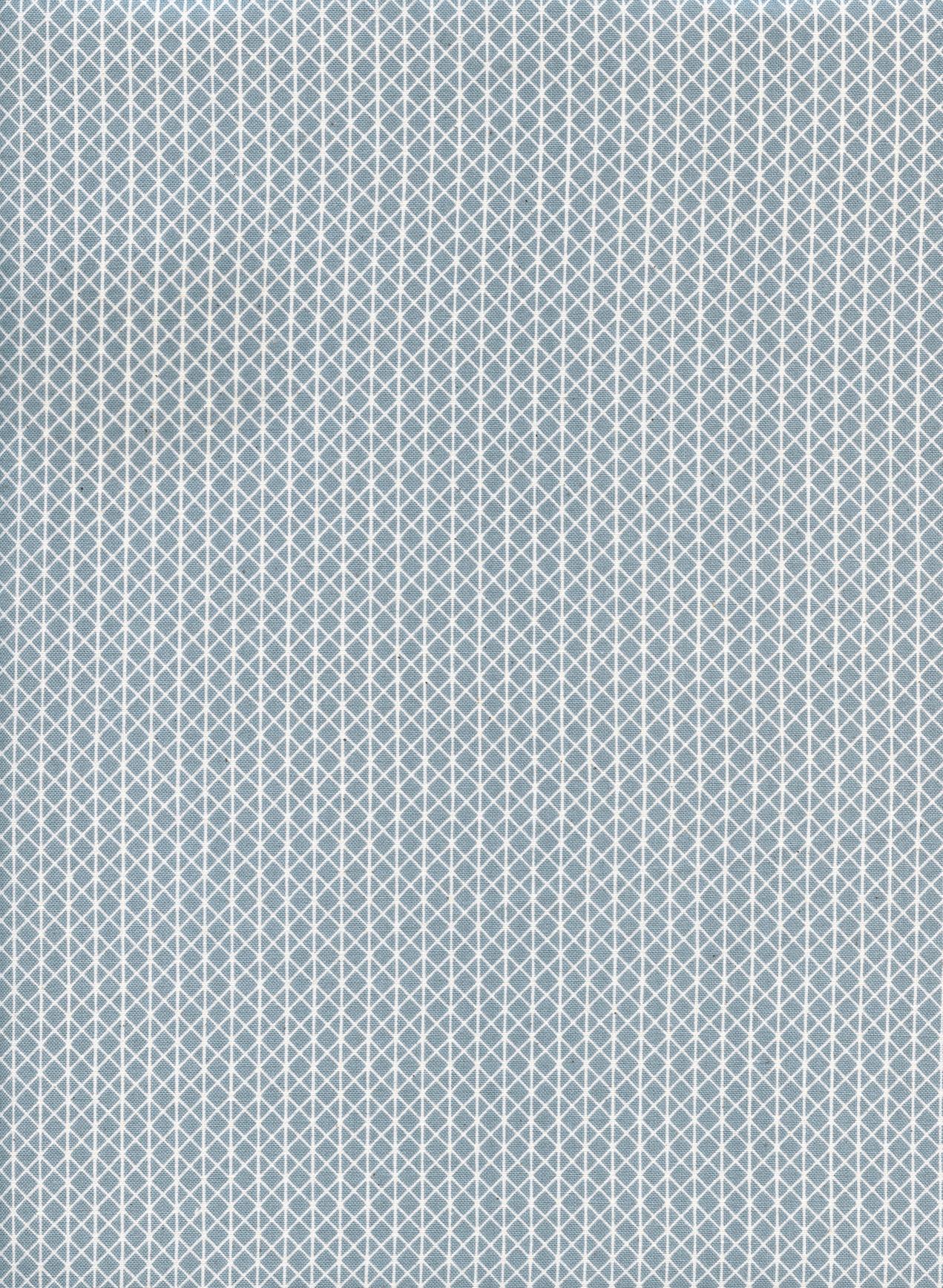 Cotton+Steel Basics - Netorious (Filler Paper)