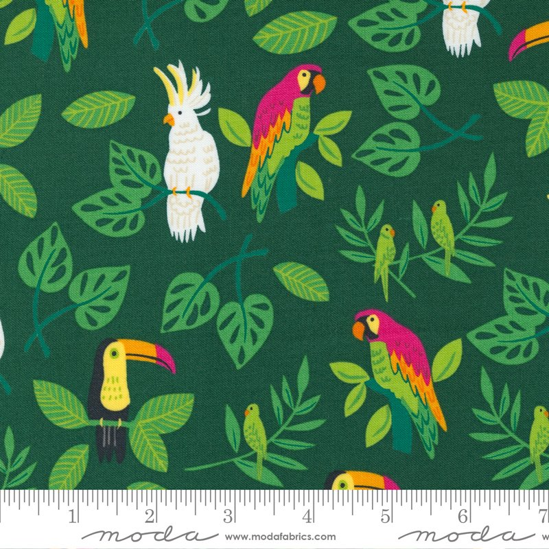 Stacy Iest Hsu - Jungle Paradise - Birds In Paradise (Palm)