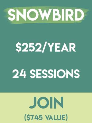 Sewcial Studio - Snowbird Member