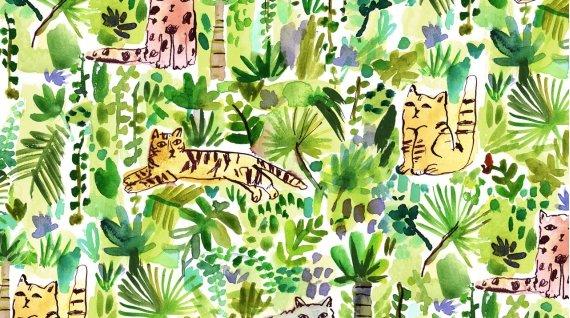 Dear Stella - August Wren - Viva Mexico! (Jungle Cats)
