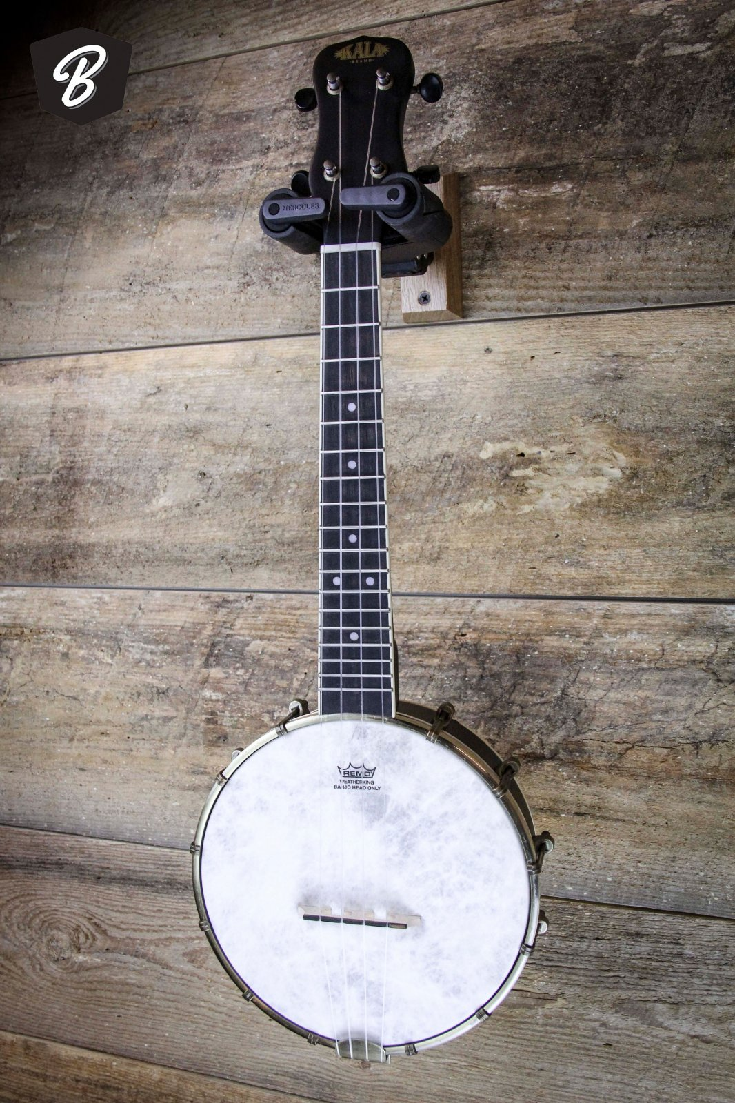 Kala KA-BNJ-C Banjo Ukulele (Banjolele) w/Gig Bag