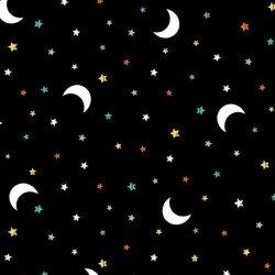 Hocus Pocus Boo Moon