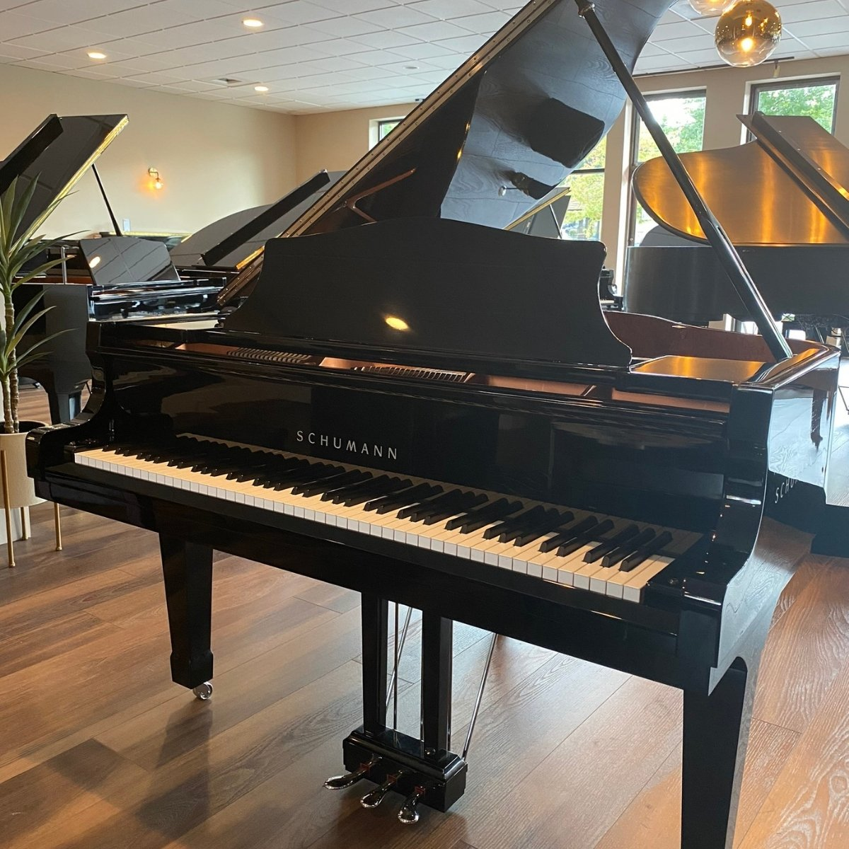 RENTED - Schumann Professional Grand Piano
