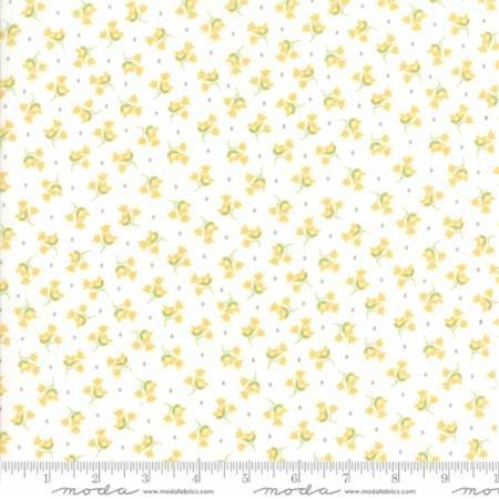 Pepper & Flax 29043-11 by Corey Yoder for Moda Fabrics