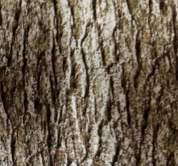 Nature's Glory - tree bark