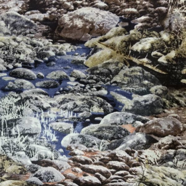Early Frost - Rocky Stream