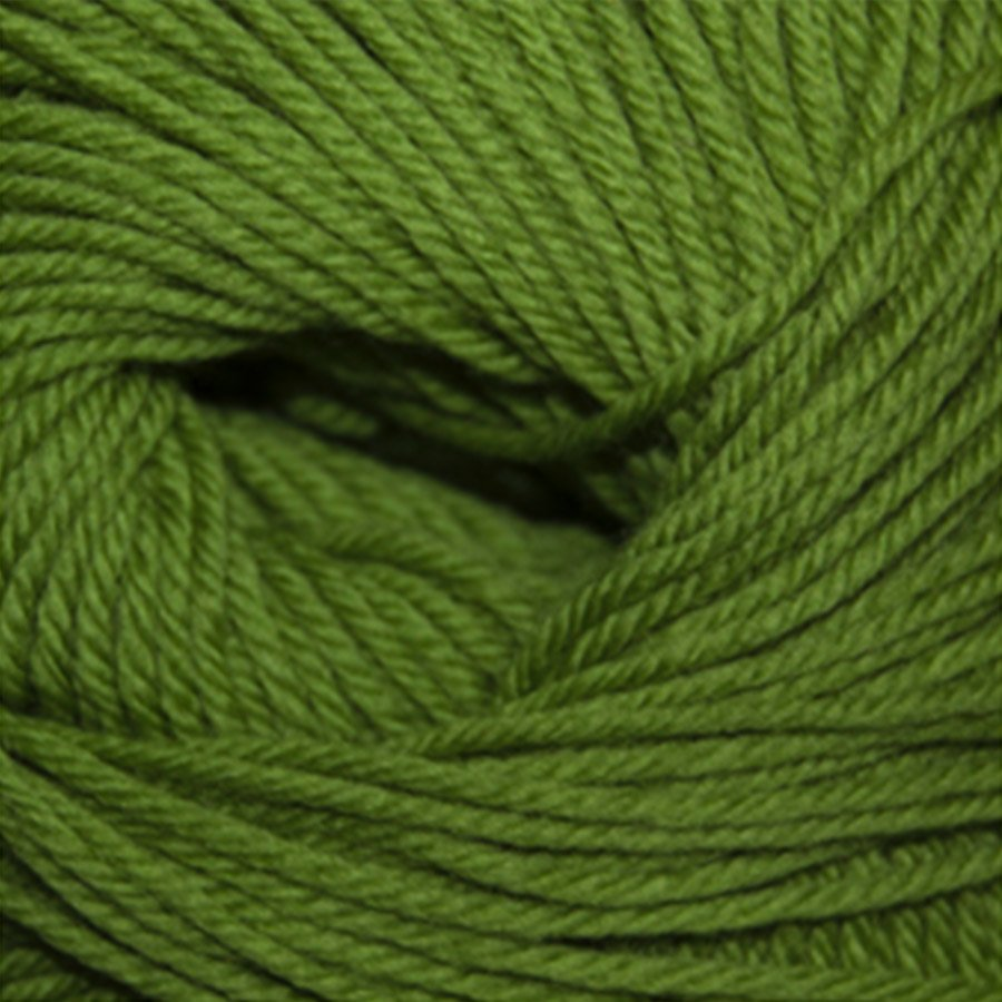 Cascade 220 Superwash - Green Apple 802
