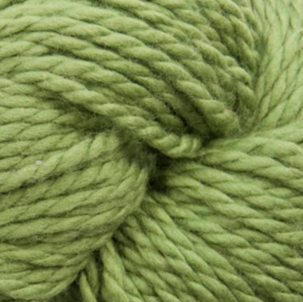 Cascade 128 Superwash - Moss 841