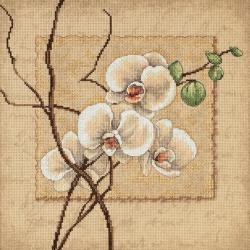 Orchids Counted Cross Stitch Kit 12 x 12