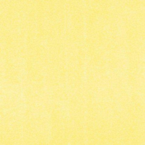 SUGAR COATED CARDSTOCK - Buttercream