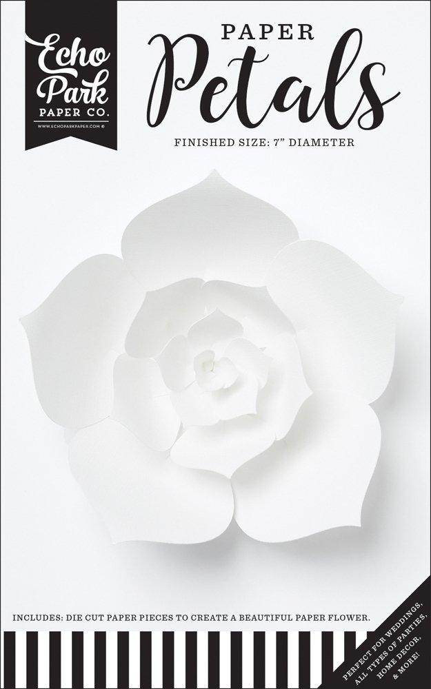 Echo Park - Small White Dahlia Flower
