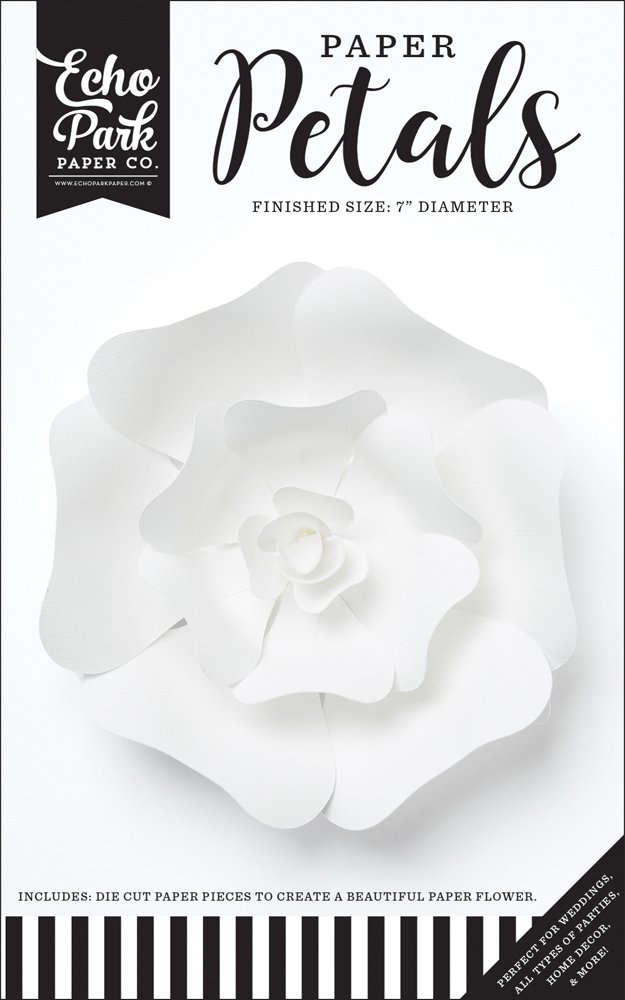 Echo Park - Small White Rose Flower