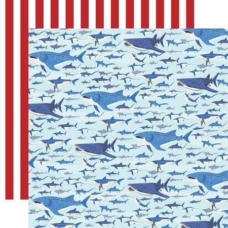 Carta Bella - Fish are Friends Shark Swim 12x12 Paper