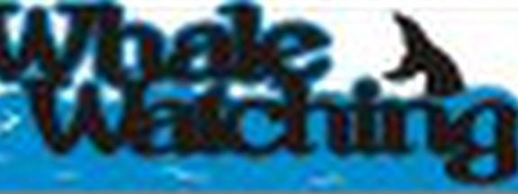 Petticoat Parlor - Whale Watching Laser Die Cut