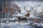 Hoffman - Call of the Wild Stag Q4460 597 December