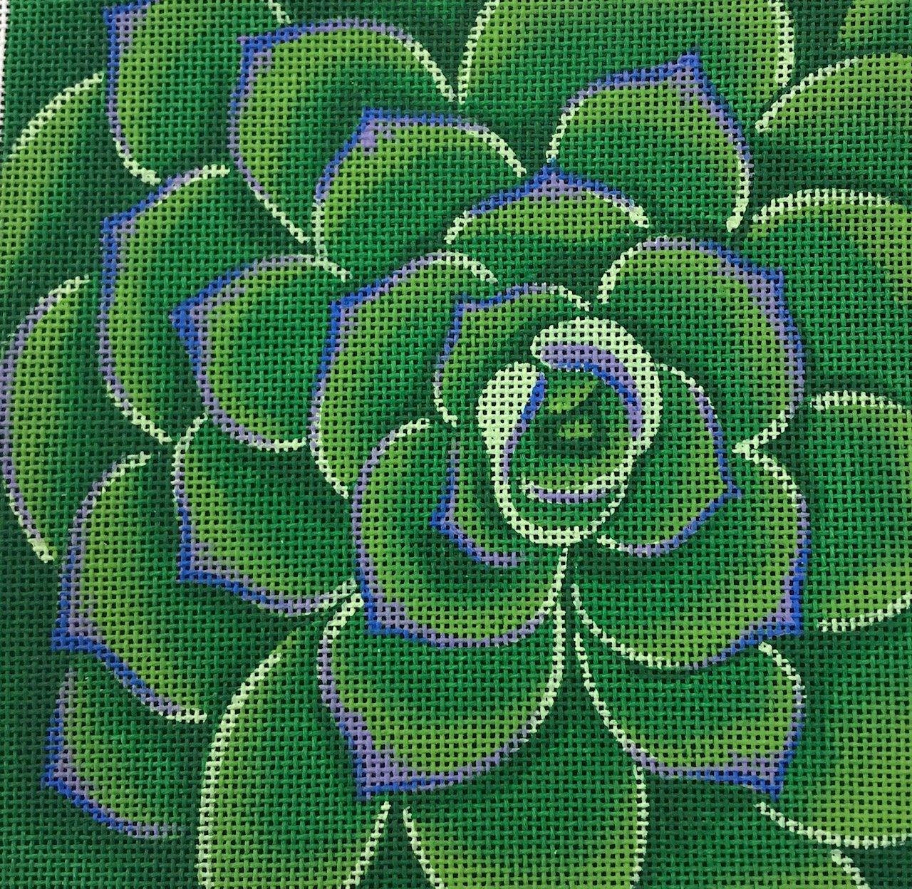 Green Succulent