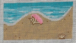Write in the Sand with Shell