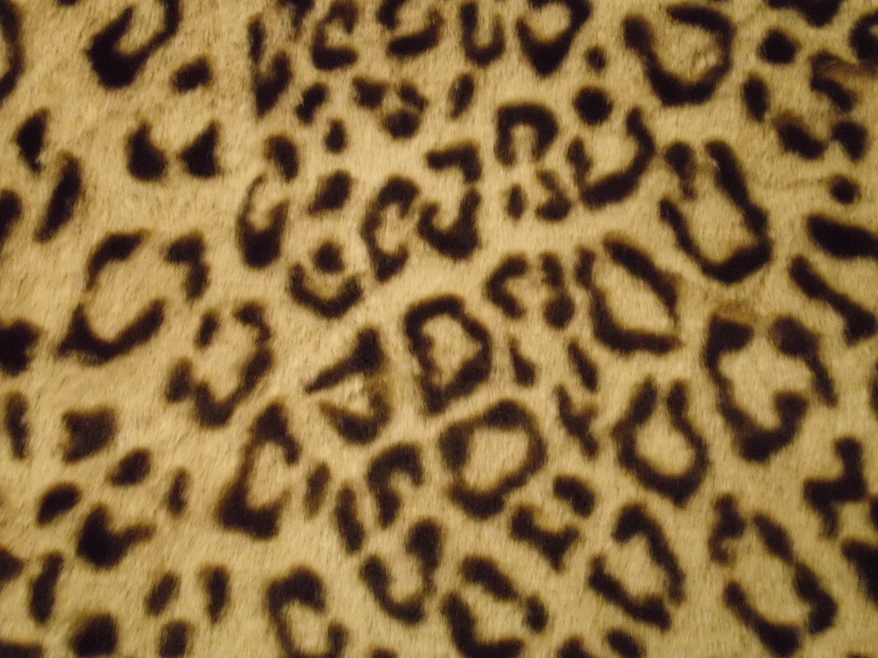 African Leopard Print Fur