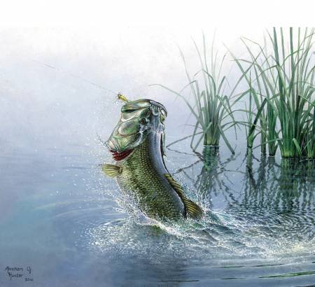 Fish And Fowl - Panel -  Bluewater Bass - Panel - P8721R-BLUEW  - size is 43 x 36 - Riley Blake Designs - 889333134954