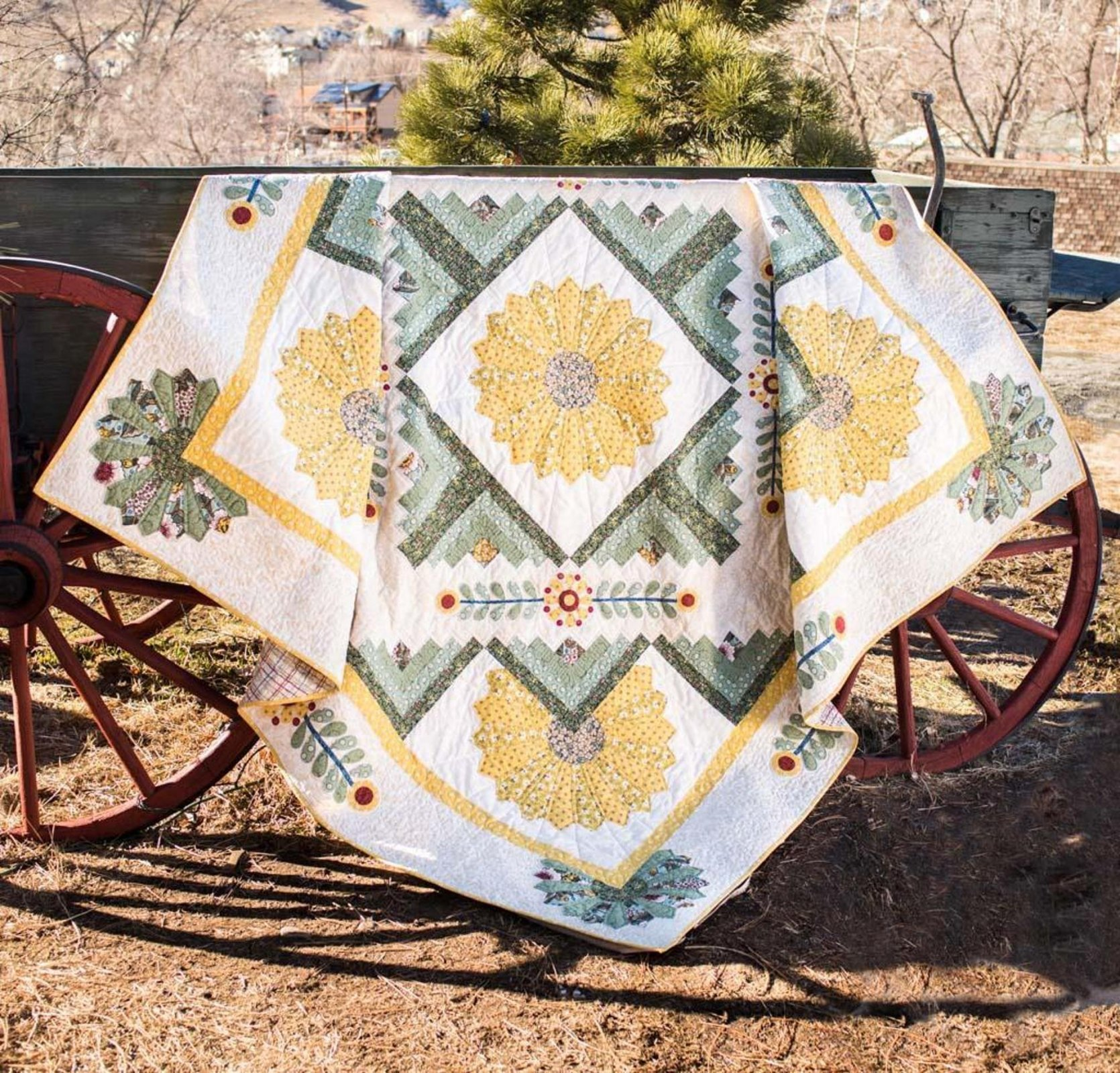 A Little Sunshine Quilt Kit  Christine Stainbrook RJR Home Again Fabrics  Lynette Jensen In