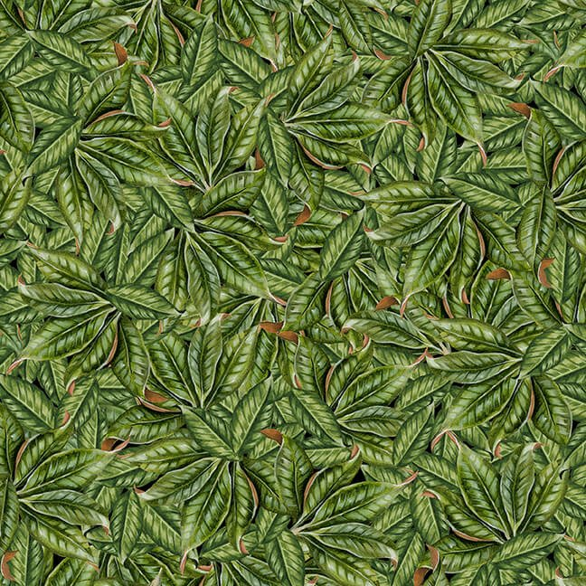 Magnolia Mania - Green Leaves - 9846-66 Green - Blank Quilting